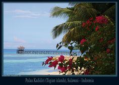 Pulau Kadidiri to Sulawasi (Indonesia, 2011).  © stéphane clément