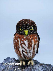 Barn owl by Sandra cortes - Bear Pile