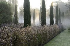 Gartenplanung | Peter Janke Gartenkonzepte