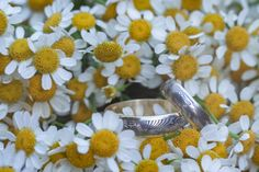 Markéta + Jan - Couple Memory Wedding Rings, Memories, Engagement Rings, Couples, Jewelry, Memoirs, Enagement Rings, Souvenirs, Jewlery