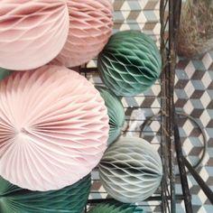Boutique Les Fleurs Crédit Photo Atelier rue verte