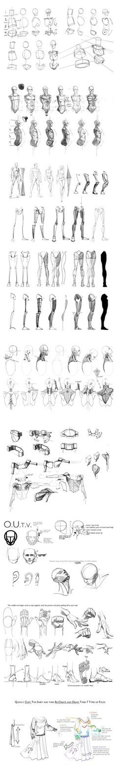 Anatomy Drawing Tutorial Guide Reference How To Draw Anime Master Anime Ecchi Picture Wallpapers… Human Drawing, Body Drawing, Drawing Practice, Drawing Poses, Anatomy Practice, Drawing Hair, Gesture Drawing, Drawing Skills, Anatomy Sketches