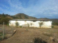 My Farm at Valdebenito, Chile
