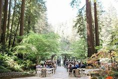 rustic wedding venues san francisco nestldown