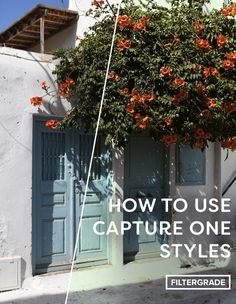 Speed up your photo editing workflow with filters. In this article, we'll share some tips and tricks to help you use Capture One Styles more efficiently.