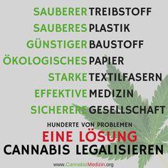 Unsere Gesellschaft muss verstehen, dass Cannabis viel mehr ist als eine Droge und eine Legalisierung uns allen helfen würde! - Gerne könnt ihr das Bild hier in den sozialen Medien teilen um noch mehr Menschen zu erreichen!  Cannabis Hanf Hemp Weed Medizin