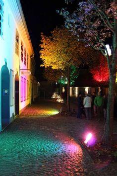 13. Rostocker Lichtwoche | Illuminierter Klosterhof während der Rostocker Lichtwoche (c) Frank Koebsch