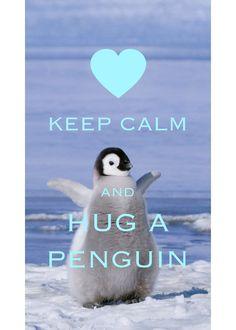 keep calm and hug a penguin / Created with Keep Calm and Carry On for iOS #keepcalm #penguin