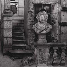 "DOMINIC ROUSE - Artist Portrait Signed Black and White Photograph 10"" x 8"" Print #SurrealConceptualRealism"