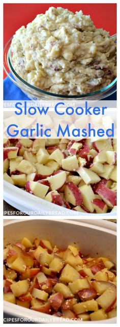 Garlic Mashed or Smashed potatoes are delicious and go well with everything. You can easily prepare these Crock Pot Garlic Mashed Potatoes in a slow cooker. Crock Pot Food, Crock Pot Slow Cooker, Slow Cooker Recipes, Crockpot Recipes, Cooking Recipes, Crockpot Dishes, Cooking Ideas, Garlic Mashed Potatoes, Mashed Potato Recipes
