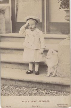 Vintage Photo of A Toddler Prince Henry of Wales in Sailor Uniform w Young Dog Vintage Photographs, Vintage Photos, Spitz Dogs, Japanese Spitz, American Eskimo Dog, Dogs And Kids, Vintage Dog, Training Your Dog, Dog Photos