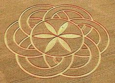 courtesy the Crop Circle Connector photo by: David Russell . Crop Circles, Mandala Pattern, Mandala Art, Aliens And Ufos, Ancient Aliens, Ancient History, Sacred Geometry Symbols, Cloud Drawing, Acid Art