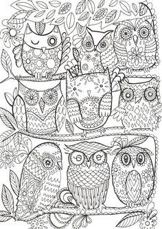 Owls By Fay Martin