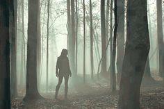 Most viewed - Teen Wolf kissthemgoodbye net 0608 - Teen Wolf high quality screencaps gallery Katniss Everdeen, Artemis, Dc Vibe, Jeff Davis Teen Wolf, Narnia, Story Inspiration, Character Inspiration, Memes Teen Wolf, Slytherin
