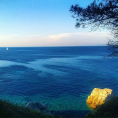 #photooftheday#webstagram#wanderlust#scenery#blue#landscape#liveauthentic#panorama#nature#canon#earth#getoutside#wonderful_places#تصويري#عدستي#summer#beautifuldestinations#beauty#صباح_الخير#exklusive_shot#sunshine#scenery#surfing#mountains#aroundtheworldpix#landscape_lovers#20likes#isoladelba#perspective#vscocam#architecture