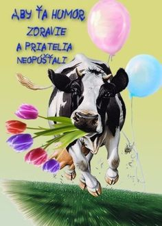 Good Morning, Birthday, Blog, Poster, Pictures, Animals, Goals, Album, Fotografia