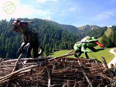 Parchi gioco Trentino: i più belli dove sono | I Viaggi dei Rospi Where To Go, Trekking, Nature, Travel, Naturaleza, Viajes, Trips, Hiking, Nature Illustration