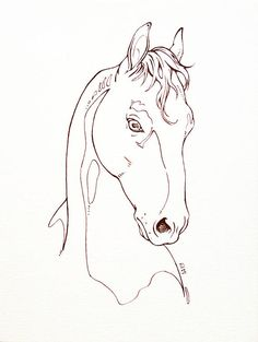 Majestic horse in ink. Original illustration. Equin portrait.