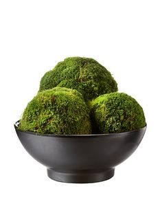 Decorative Moss Balls Mesmerizing Decorative Forest Moss Balls To Put In The Turned Wood Bowl And Add Design Inspiration