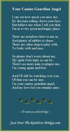 Dog Quotes, Animal Quotes, Animal Poems, Qoutes, Cowboy Quotes, Yorkshire Terrier, Boston Terrier, I Love Dogs, Puppy Love