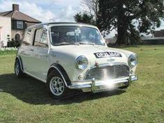 Beautiful Classic Mini