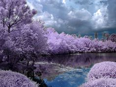 Most Beautiful Images of Nature | Tags: beautiful nature beautiful pic beautiful season spring season ...