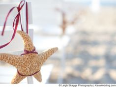 Starfsih for ceremony chair decor. Change the ribbon size/color to match your theme.