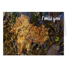 I Miss You So Much! Nature Photography Card - photography gifts diy custom unique special