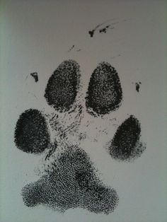 Good paw print for a memorial piece, if the vet clinic happens to lose your deceased dog's final print...
