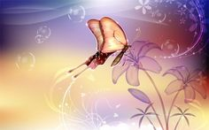 Fantasy Fairy Butterfly Abstract Background JPG - http://www.dawnbrushes.com/fantasy-fairy-butterfly-abstract-background-jpg/