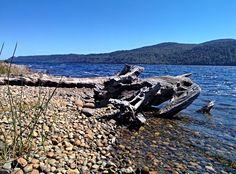 https://flic.kr/p/H265cB   Chiloé022   Bello Paisaje en la Rivera del Lago Cucao, Isla de Chiloé, Chile.