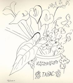 Fleurs tabac / Matisse