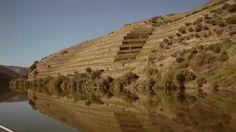 Instituto dos Vinhos do Douro e Porto (filme promocional 2min)