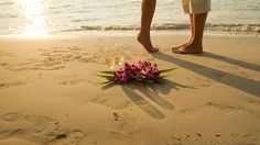 Planning your perfect wedding in Aruba Dutch Caribbean Find out why Aruba is a Hot destination and all what you need to know when planning your wedding Aruba. You probably know that Aruba is a hot Caribbean wedding destinationfor everyone, including famous such as Michelle Bachman and Adrian Solis who did their wedding in 2013 …