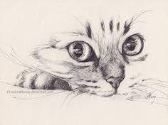 Resultado de imagen para gatos tumblr dibujo