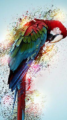 Parrot vibrant art