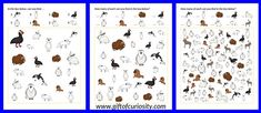 FREE printable Arctic Animals I Spy games. Great for helping young children learn the names of common Arctic animals. || Gift of Curiosity