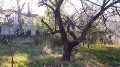 Meram ..evimiz _ bahçemiz .Çocukluğumuz _Gençliğimiz.