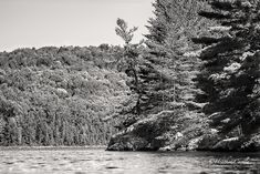 """#ChickPicotheDay! (Day 3,225) I know, I know, it's fall. Life has been hectic 'round here. I'm """"getting on it"""" but in the mean time, enjoy this black and white will ya? Thanks! • • • • • #Blackandwhite #ForestandLake #BaptisteLake #HastingsHighlands #OntarioNorth #HeatherCardlePhotographer Image Shows, Ontario, Mountains, Black And White, Fall, Photography, Travel, Outdoor, Life"""