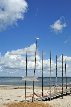 Beach Texel Holland