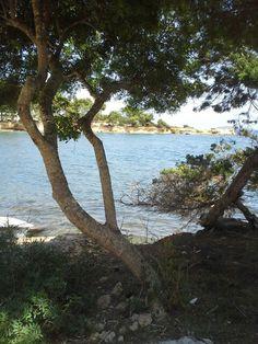Sta Eulália Ibiza