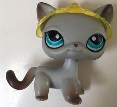 Littlest Pet Shop 391 Grey Egyptian Cat Teal Blue Eyes Pets Around The World | eBay