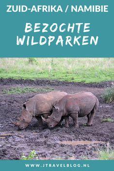 In Zuid-Afrika en Namibië heb ik verschillende wildparken bezocht en veel wild gespot. In deze blog neem ik je mee naar de wildparken. Rijd en spot je mee? #zuidafrika #namibie #gamedrive #wildparken #wildlife #jtravel #jtravelblog