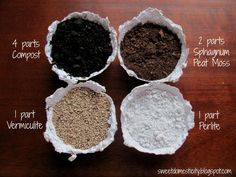 Blend Your Own Seed Starting Mix Sweet Domesticity Succulent Gardening, Garden Pests, Container Gardening, Gardening Tips, Organic Gardening, Succulent Plants, Cacti, Growing Succulents, Planting Succulents