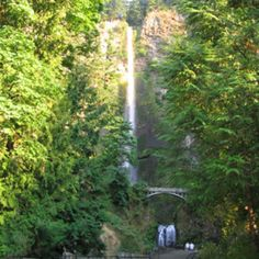 Multnomah Falls, OR--spectacular hike! Beautiful!
