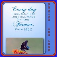 Psalm  145:2    Every day will I bless thee