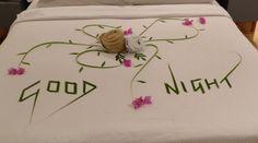 Kuramathi roses Maldives, Origami, Towel, Room Decor, Romantic, School, Diy, Amor, Decorations