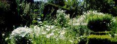 Der Weisse Garten (Sissinghurst)