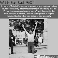 Clameur de haro - WTF fun fact | Follow @gwylio0148 or visit http://gwyl.io/ for more diy/kids/pets videos