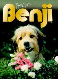 Benji! wow blast from the past.